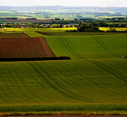 East Lothian tile pic