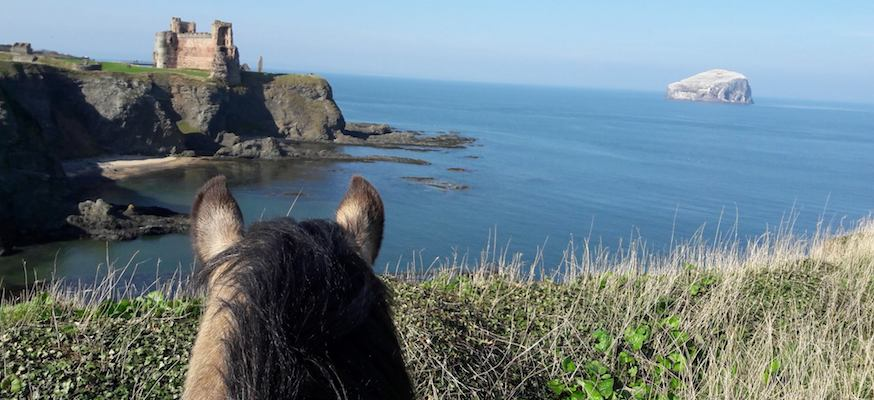 Horse riders view across to Tantallon Castle and Bass Rock